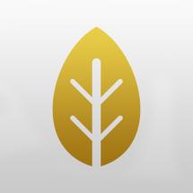 Logo Harlequin Herb
