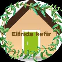 Logo elfrida kefir