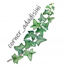 Logo corner_adadisini