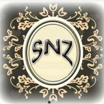 Logo va's collections