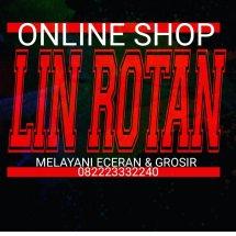 Logo LIN ROTAN