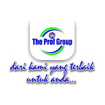 Logo The Prof Group