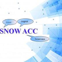 Logo SnowAcc