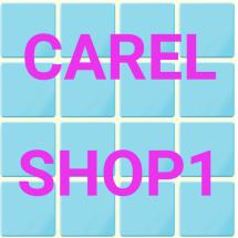 Logo carelshop1