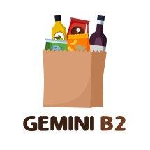 Logo Gemini B2