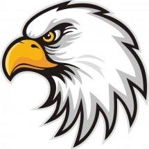 Logo Garuda Putera