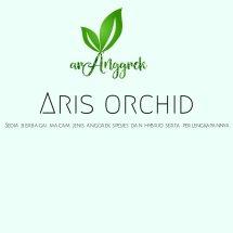 Logo aris nursery