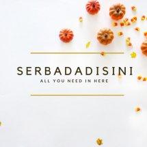 Logo SerbaSerbiTokoKami