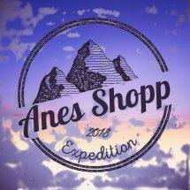 Logo Anes Shopp