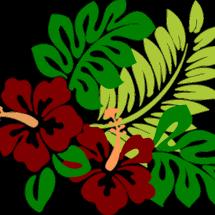Logo Kembang Kedoya