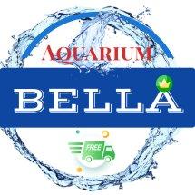 Logo Bella And Zona