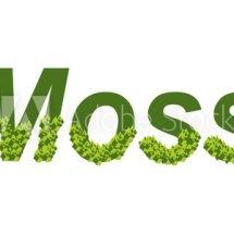 Logo moss indonesia