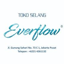 Logo Toko Everflow