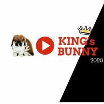 Logo KingsBunny
