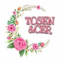 Logo tosen&cer