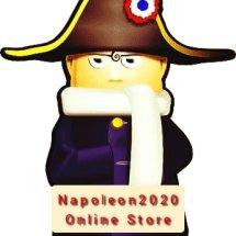 Logo Napoleon2020