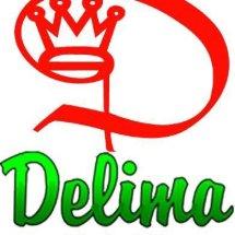 Logo Bingke Delima