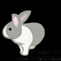 Logo Fit-bunny Feed