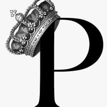 Logo princeshop88