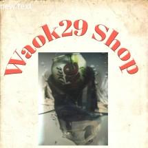 Logo waok29