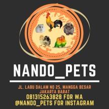 Logo Nando Pets