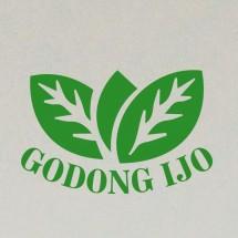 Logo GI 234