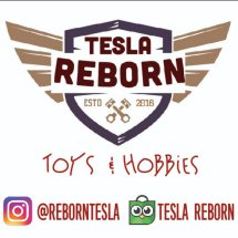 Logo Tesla Reborn