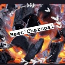 Logo Best Charcoals