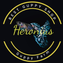 Logo Heronius Guppy Farm
