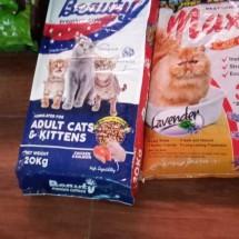 Logo Beby cat dog shop