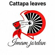 Logo imamjordanstore