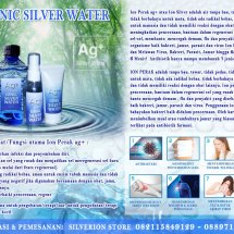 Logo Ionic Silver Water Factory