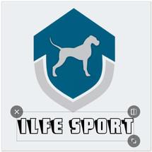 Logo ilfe sport