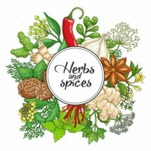 Logo Erbe Aromatiche