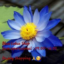 Logo Blue Lotus Shop
