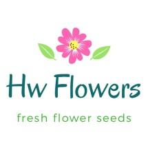 Logo Hw_Flowers