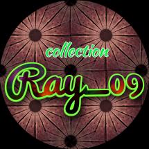 Logo RAY_SHOP09