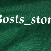 Logo bosts_store