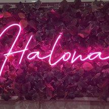 Logo Halona Utama