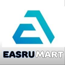 Logo Easru Official