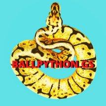 Logo BallpythonGS