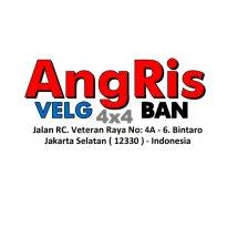Logo AngRis