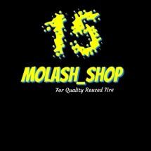 Logo molash_shop
