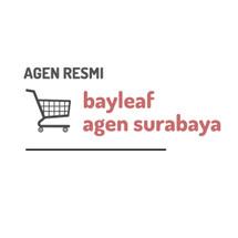 Logo bayleafagensurabaya
