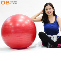 Gym Ball Berkualitas Barang Impor Diameter 55 Cm BONUS POMPA ANGIN