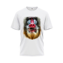 Fitted By Snapback Tshirt Animal Series Baboon
