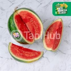 Semangka Merah Non Biji SomerVille 1PCS