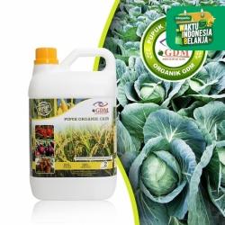GDM Pupuk Organik Cair untuk Tanaman Pangan Sayur (kemasan 2 Liter)