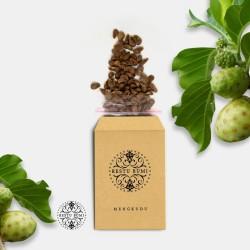 Benih Biji Mengkudu (Pace/Cengkudu/Morinda Citrifolia)