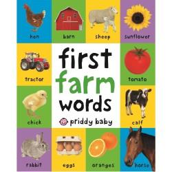 BUKU IMPORT - FIRST 100 FARM WORDS